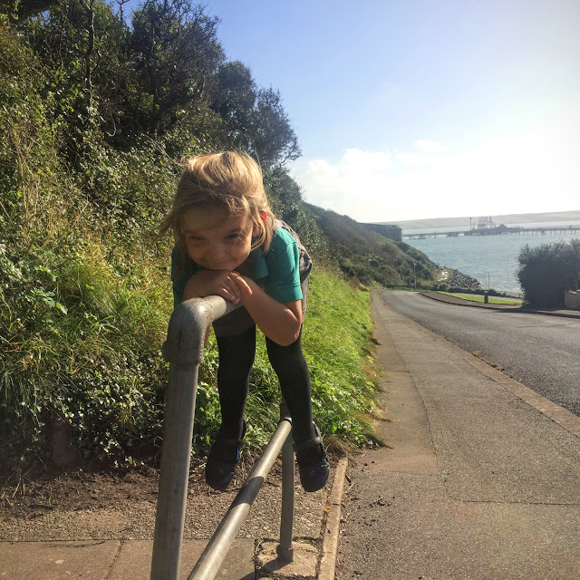play on bars, bars,  school runs, pembrokeshire, rural life, everyday, nature walk, girl with umbrella, umbrella, rainy walk, thomas the tank, spiderweb, spiderweb in rain, pink flowers, pink chysantheums,