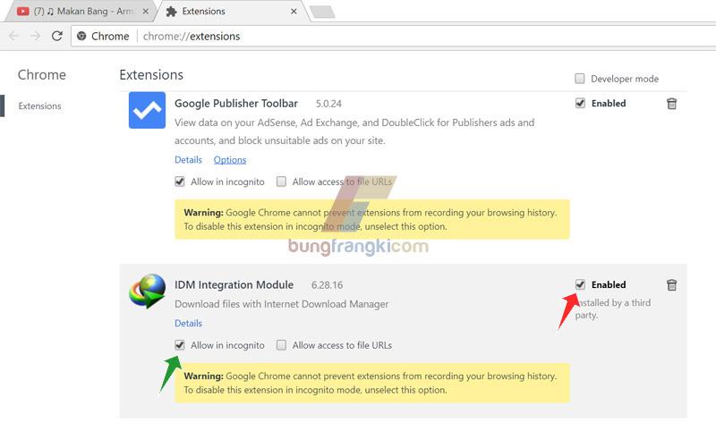 Menampilkan IDM di Youtuber pada Google Chrome