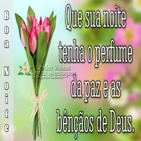 Que sua noite  tenha o perfume   da paz e as   bênçãos de Deus.  Boa Noite!