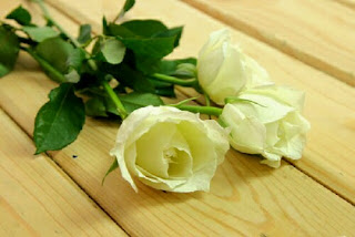 nhuộm màu hoa hồng