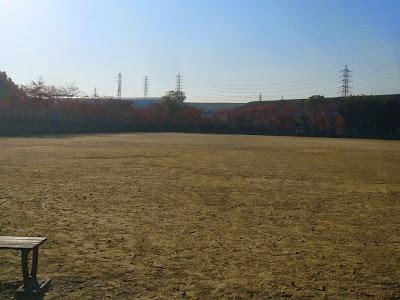 寝屋川公園 紅葉ウォーキング ソフトボール広場