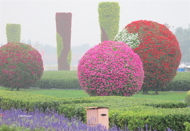 plant art, China