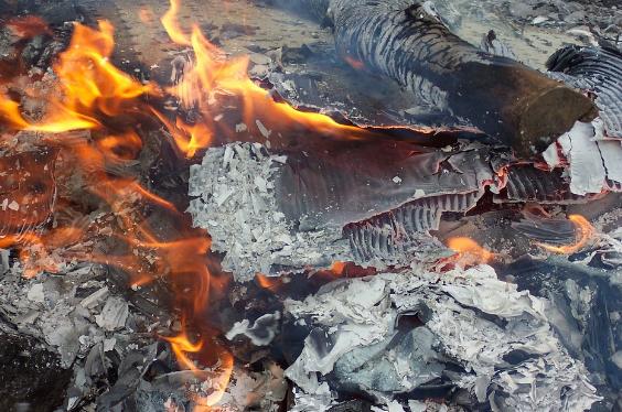 Jangan Membakar Sampah, Bahayanya Bagi Kesehatan Tubuh