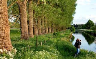 Parque Natural Schwalm-Nette en Westfalia