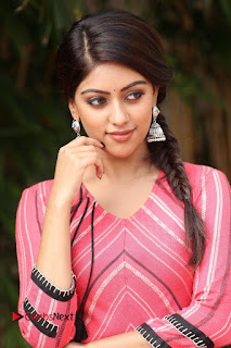 Actress Anu Emmanuel Pictures at Majnu Success Meet  0009.JPG