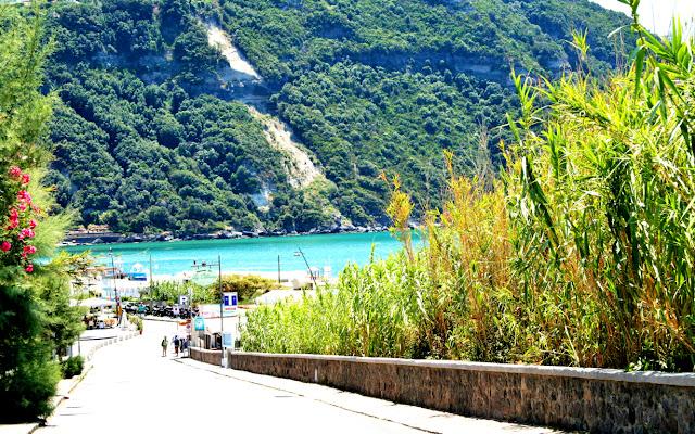 discesa, strada, alberi, vegetazione, boschi, spiaggia, mare, acqua, Ischia, isola