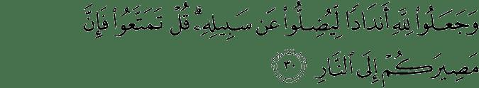 Surat Ibrahim Ayat 30