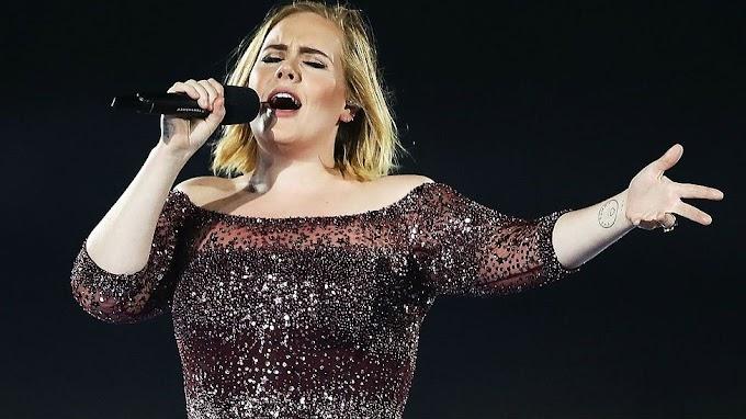 Adele stops Sydney gig because of fan's cardiac arrest