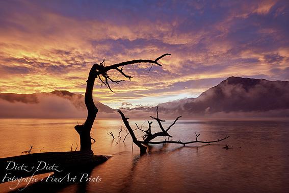 Morgenrot mit Rigi
