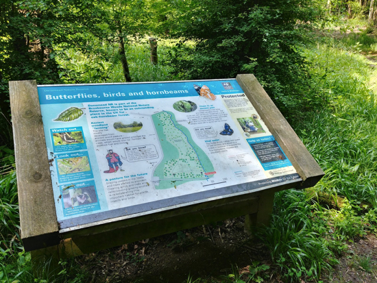 Photograph of The information board outside Danesmere Nature Reserve Image by Hertfordshire Walker released under Creative Commons BY-NC-SA 4.0