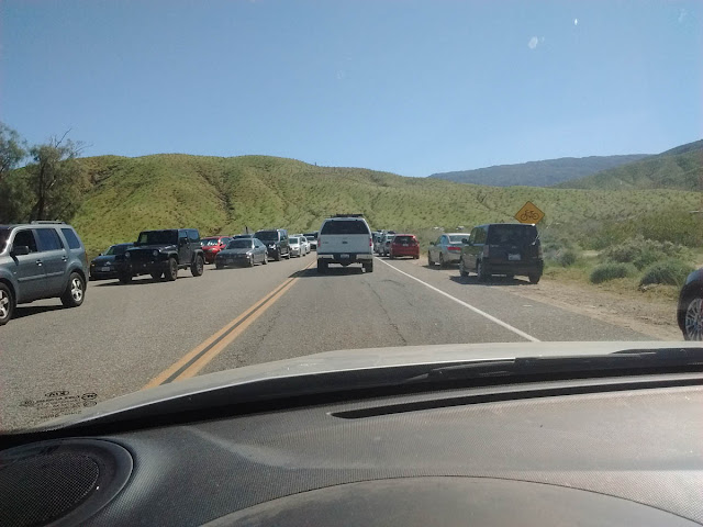 Traffic at Borrego Springs during super bloom weekend