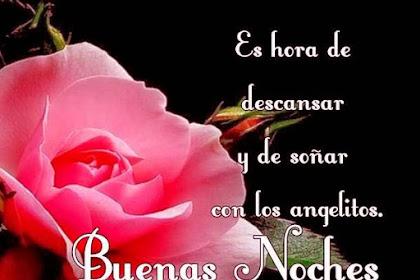 Imagenes De Rosas Con Frases De Buenas Noches Amor