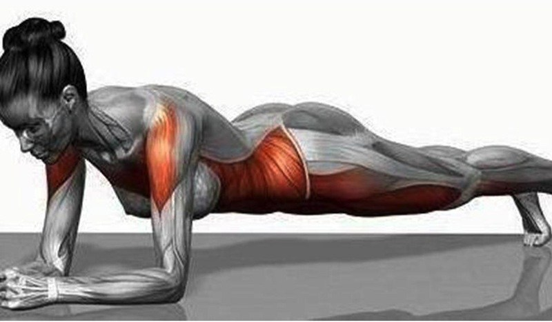 how-to-plank-exercise