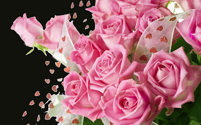 bouquet-of-pink-roses-hdwallpapers-images