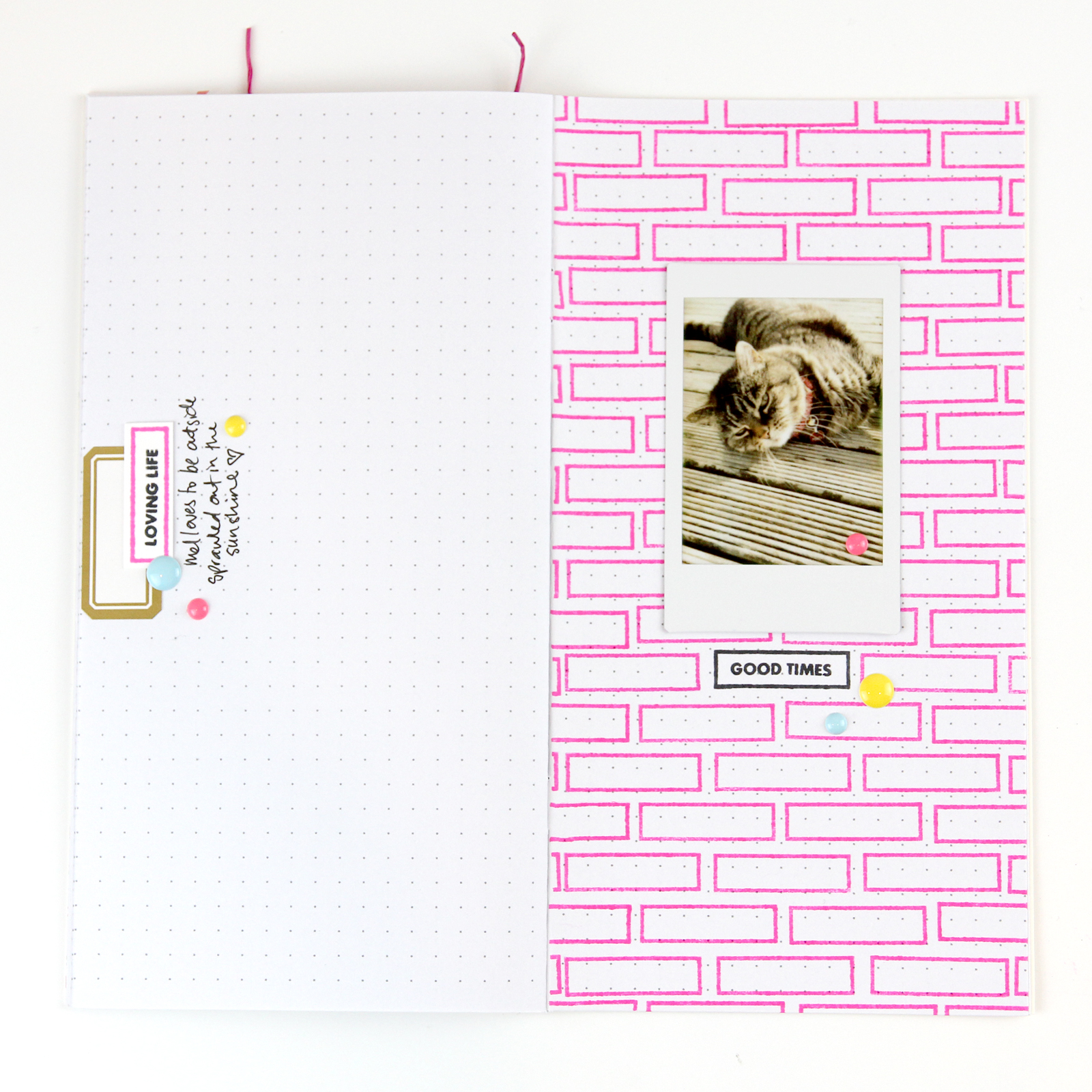 This First Page Used The Label Stamp To Create A Brick Type Background Pattern For My Photo Using Fun Neon Coloured Ink Makes Pop