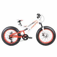 Sepeda Gunung Remaja Pacific Viper 5.0 6 Speed Ban Gendut 20 Inci