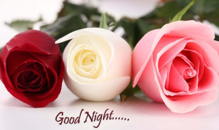 Download Hd Good Night Flowers Images Pictures Wallpapers Photos