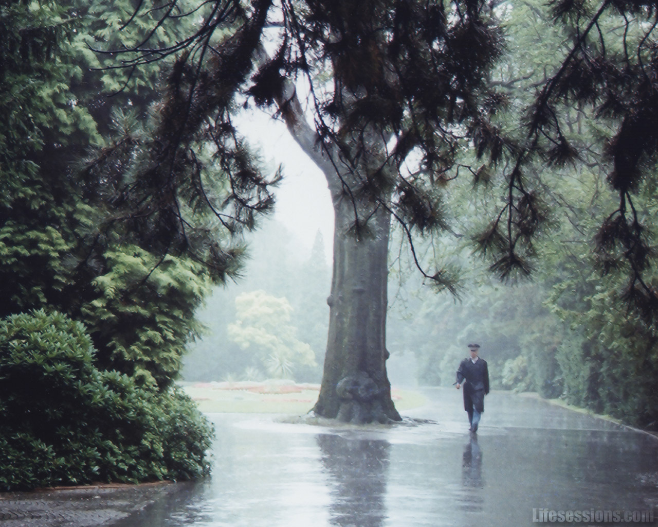 https://4.bp.blogspot.com/-jS2Vu1PsPb8/TmD3Y96AEDI/AAAAAAAABg0/thsV35EIZIc/s1600/rain1.jpg