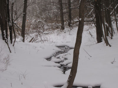 creek in snow