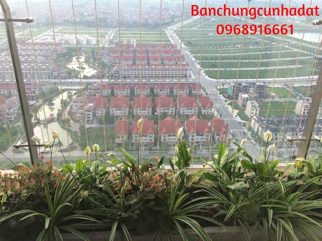 Penthouse - Hướng View KĐT Nam Cường