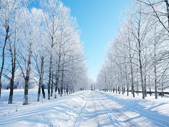 Tema Sull Inverno Scuolissima Com