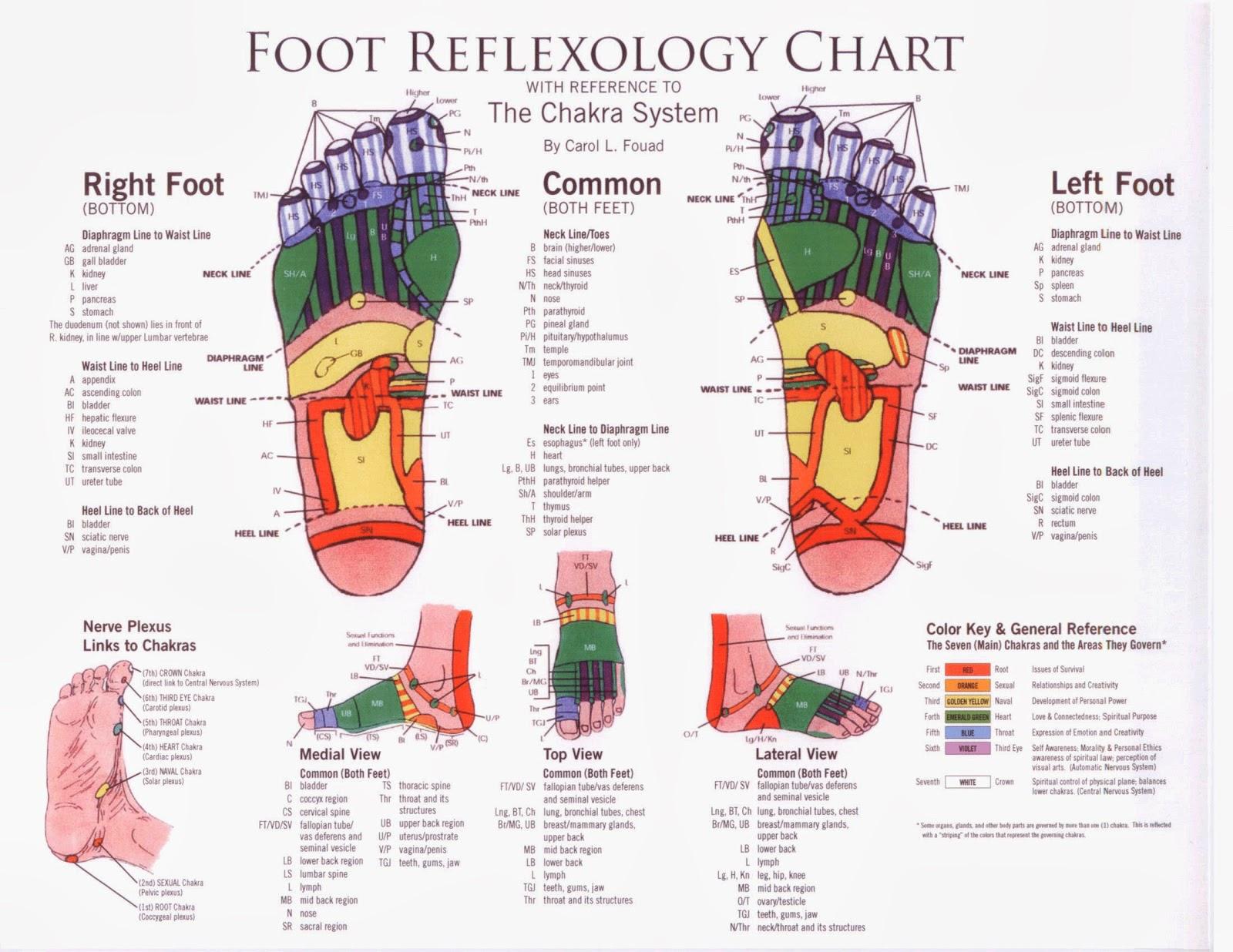 reflexology foot diagram reflex zones 2000 dodge ram wiring radio the feet are a mirror of health