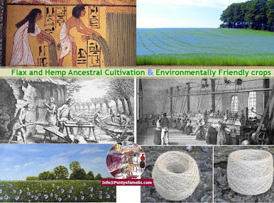 Hemp Flax Ancestral Cultivation and Manufacturing, so many applications are on the right path of development: green buildings, agri-food sector, Bio-based materials and natural fiber composites, textile industry, health and body care purposes.