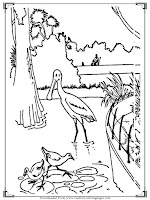 printable bird adults coloring pages