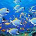Como os peixes sobem e afundam na água?