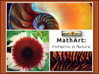 math art patterns in nature banner