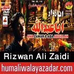 http://www.humaliwalayazadar.com/2016/10/rizwan-ali-zaidi-nohay-2017.html