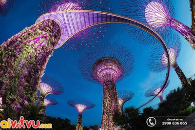 Gardens by the Bay ở vịnh Marina Singapore