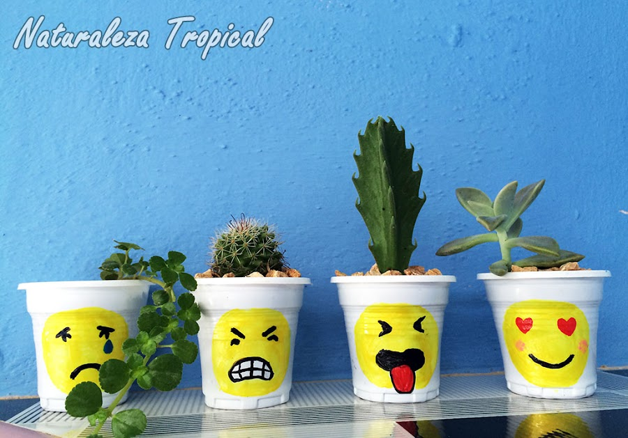 Macetas decoradas con emojis o emoticonos para regalar o decorar nuestro hogar