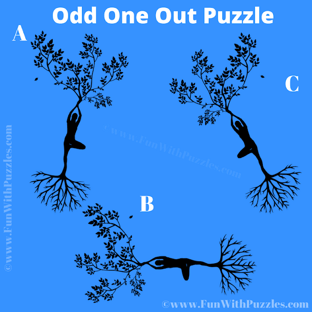 In this Mind Picture Puzzle, your challenge is to find the Odd One Out among given three puzzle images