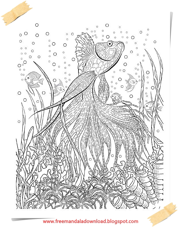 Tolle Fisch Färbung Blatt Galerie - Druckbare Malvorlagen ...