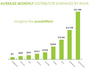 IT Works compensation plan image