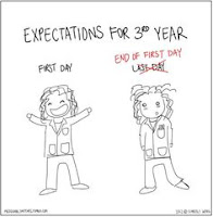 A cartoon showing a 3rd year medial student expectations