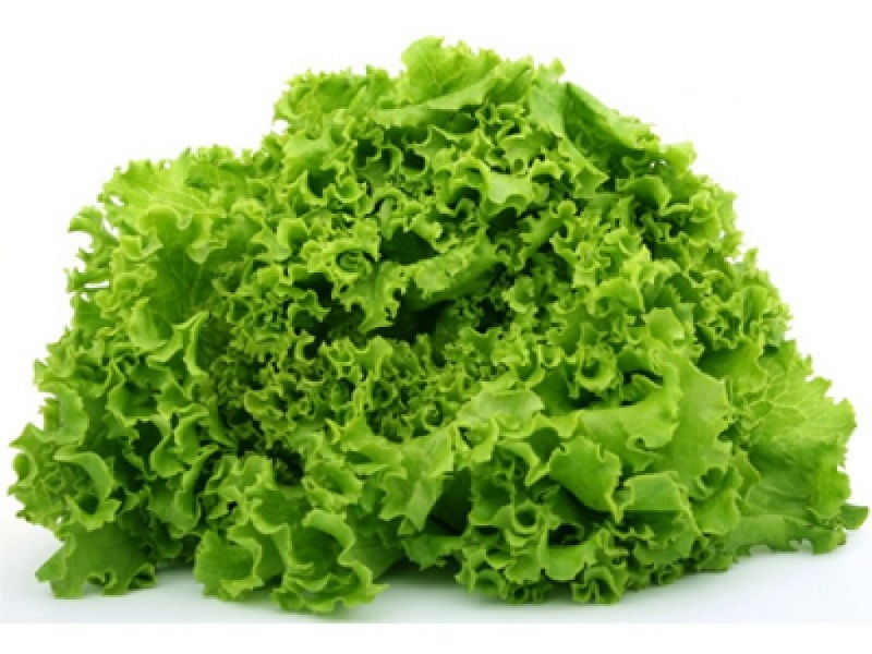 Image Can Betas Eat Lettuce