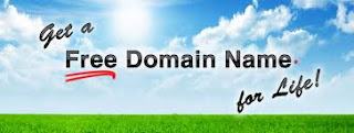 Guide on free domains
