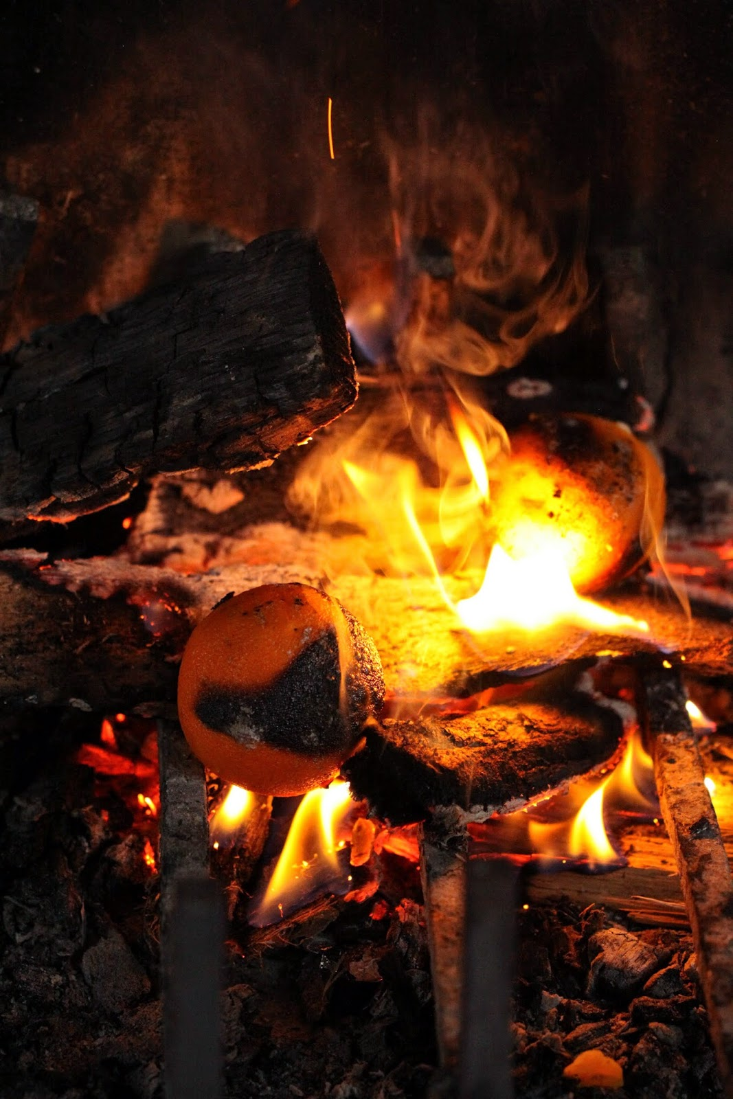 Dans la cuisine de sophie livre cuisiner avec le feu - Cuisiner au feu de bois ...