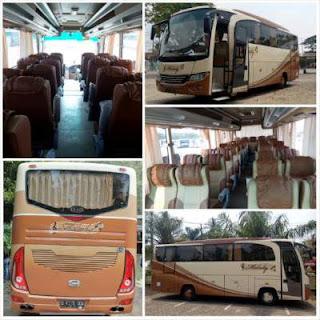 Sewa bus pariwisata secara umum