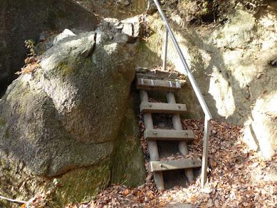 交野山 ハイキング 梯子のような階段