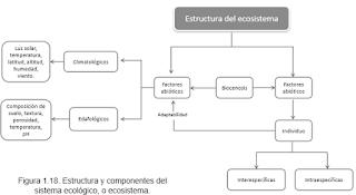 Recuperación Medio Ambiente Y Biología Grado Septimo