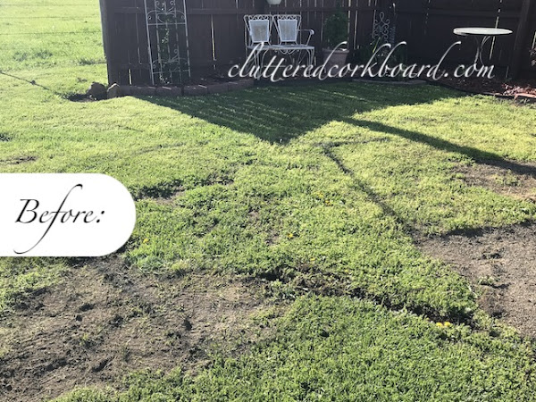 My New Paver Patio - A Backyard Update