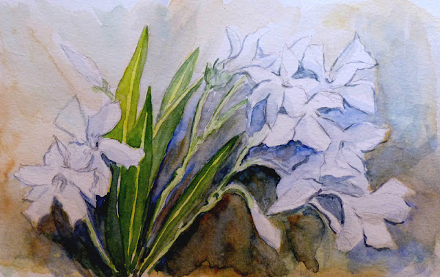 El delicado pulso de la acuarela en la artista Carmen Jiménez