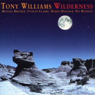 Tony Williams - 1996 - Wilderness