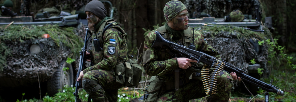 Estonia will help Ukraine to reform territorial defense