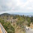 Andon-Reid Inn Bed and Breakfast Perspectives: Clingmans Dome a Must-See in the Smokies
