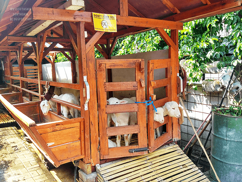 wisata-farmhouse-lembang-bandung