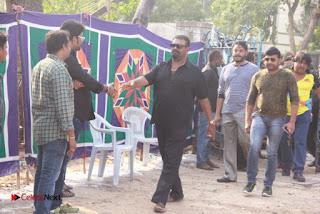 Tamil Film Industry Jallikattu Support Protest of Jallikattu  0043.jpg